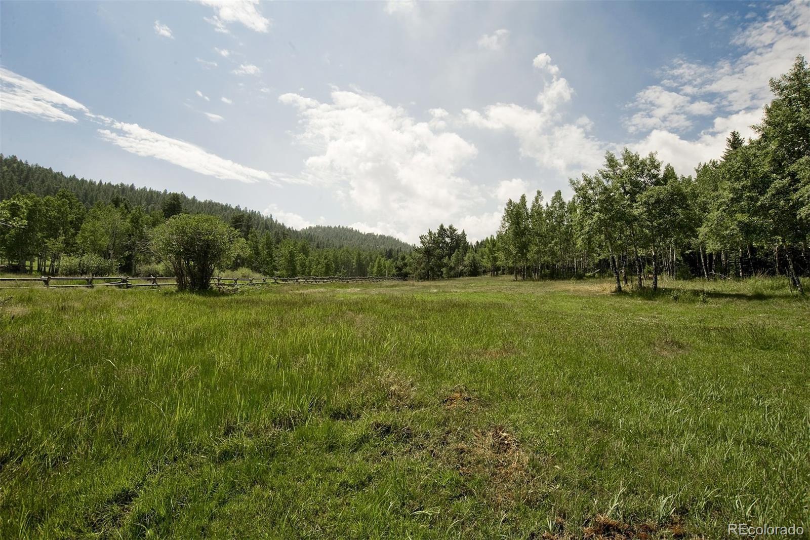 6472 LITTLE CUB CREEK Road, Evergreen, CO 80439 - Evergreen, CO real estate listing