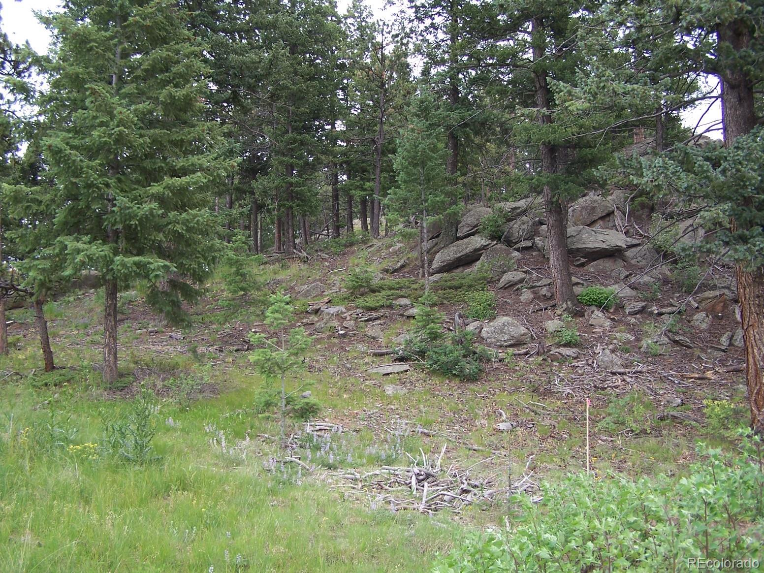 9256 Broken Bow Ranch Road Property Photo - Morrison, CO real estate listing