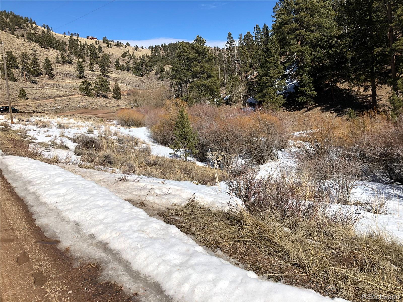 925 Beartrap Road Property Photo - Red Feather Lakes, CO real estate listing