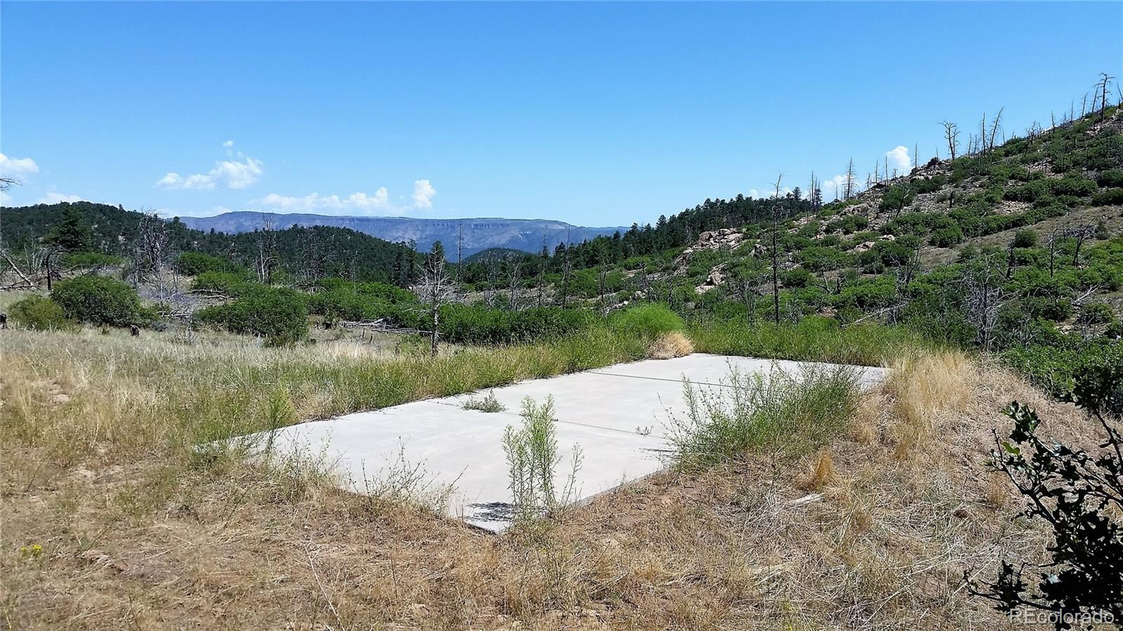 221 Cottonwood Drive Property Photo - Cotopaxi, CO real estate listing