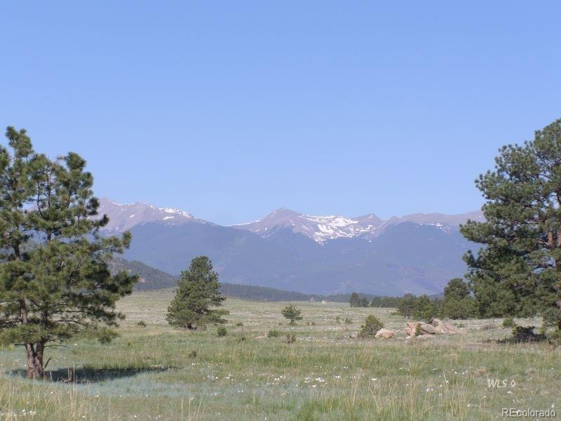 Lot 15 TBD Property Photo - Cotopaxi, CO real estate listing
