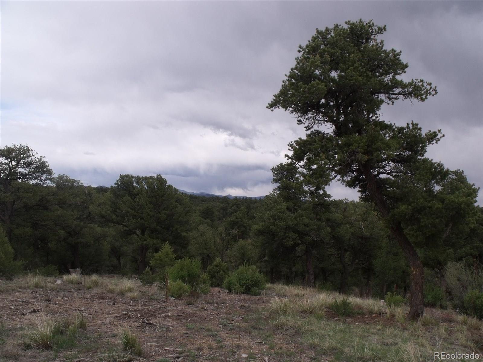 00 35th Trail Property Photo - Cotopaxi, CO real estate listing