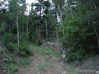 MINE LITTLE GIANT Property Photo - Dumont, CO real estate listing