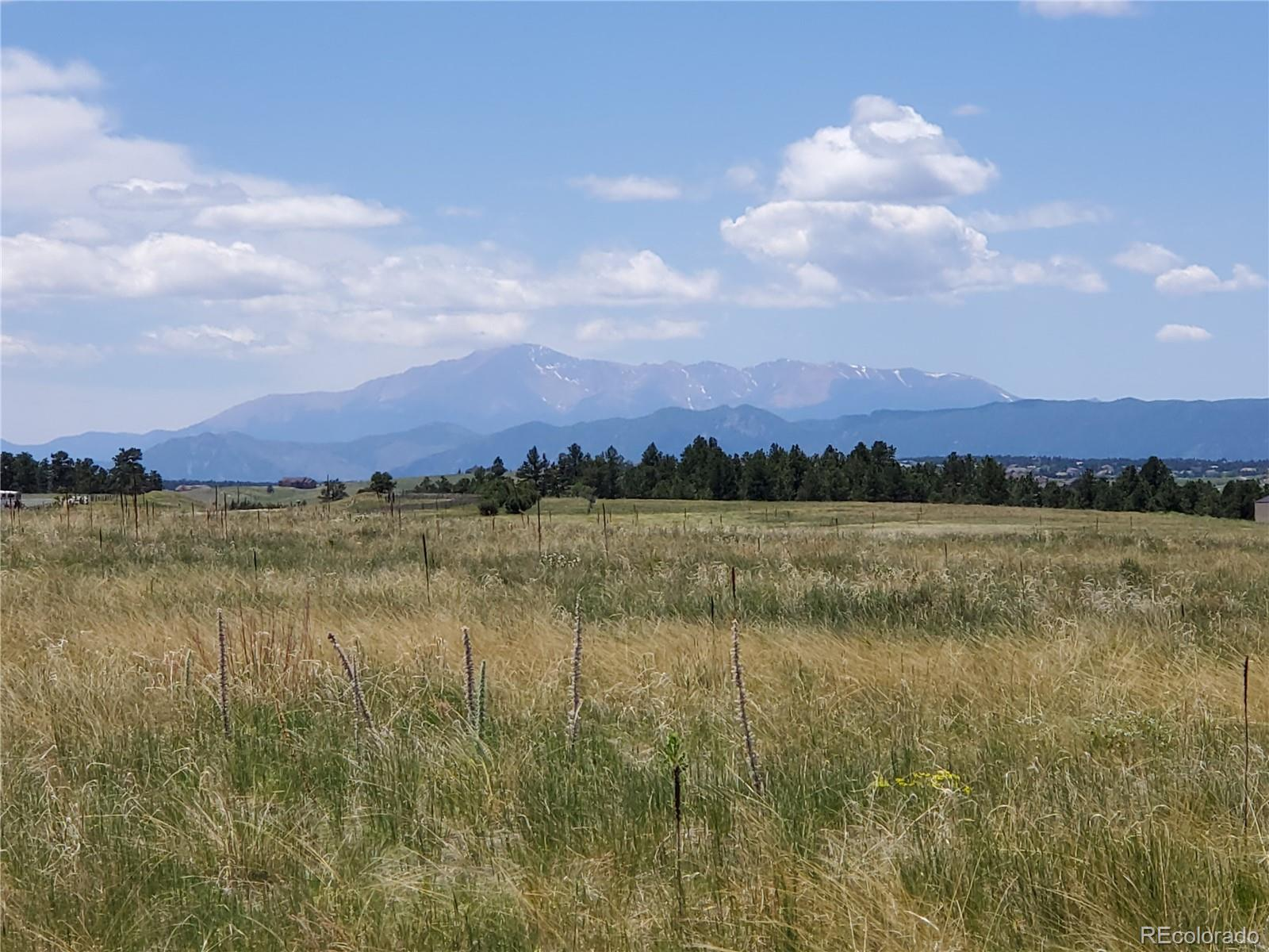 14895 S State Highway 83 Property Photo - Larkspur, CO real estate listing