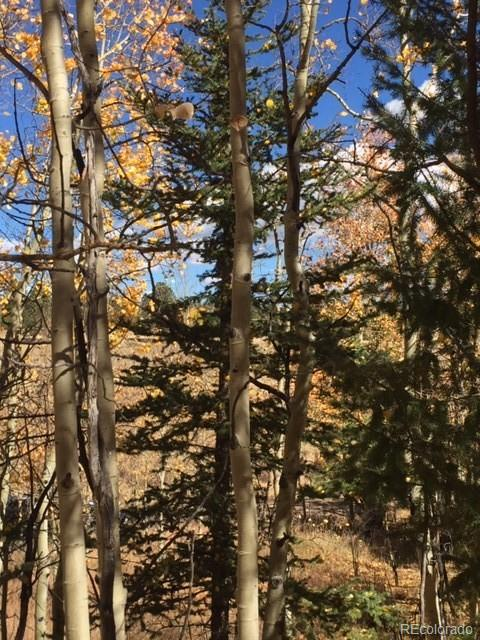 47 Hidden Valley Circle Property Photo - Guffey, CO real estate listing