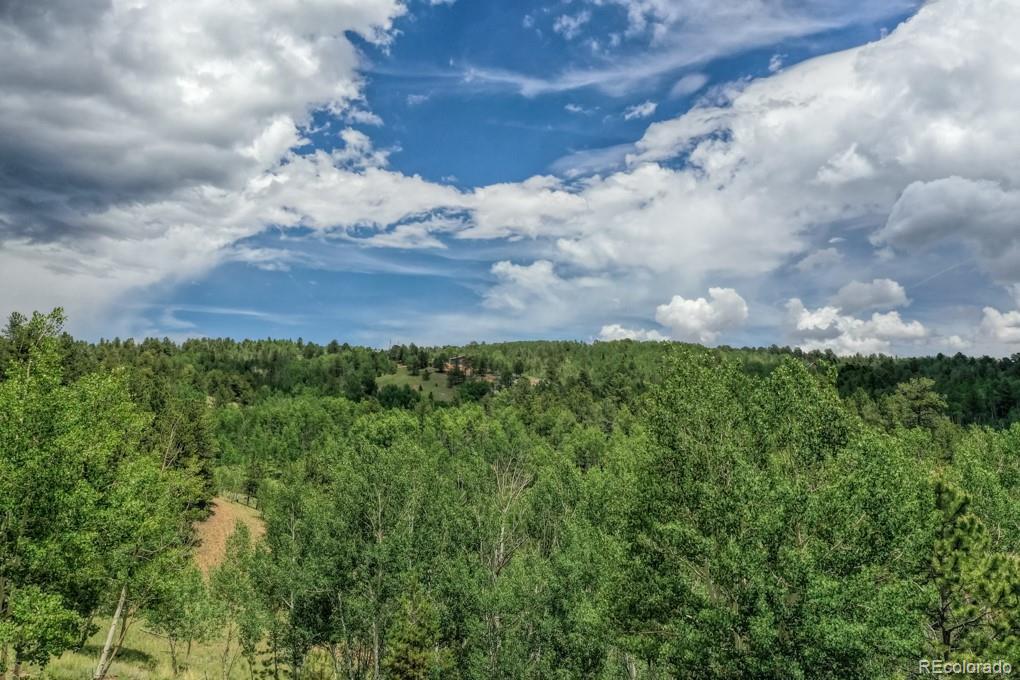 1087 Princess Road Property Photo - Cripple Creek, CO real estate listing