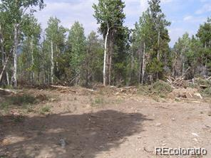 New House Property Photo - Central City, CO real estate listing
