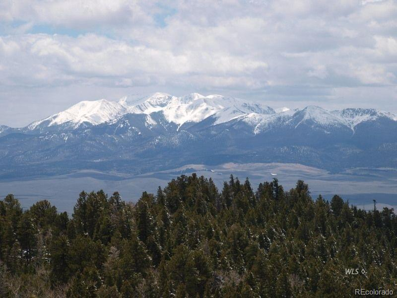 1320 Engelman Road Property Photo - Westcliffe, CO real estate listing