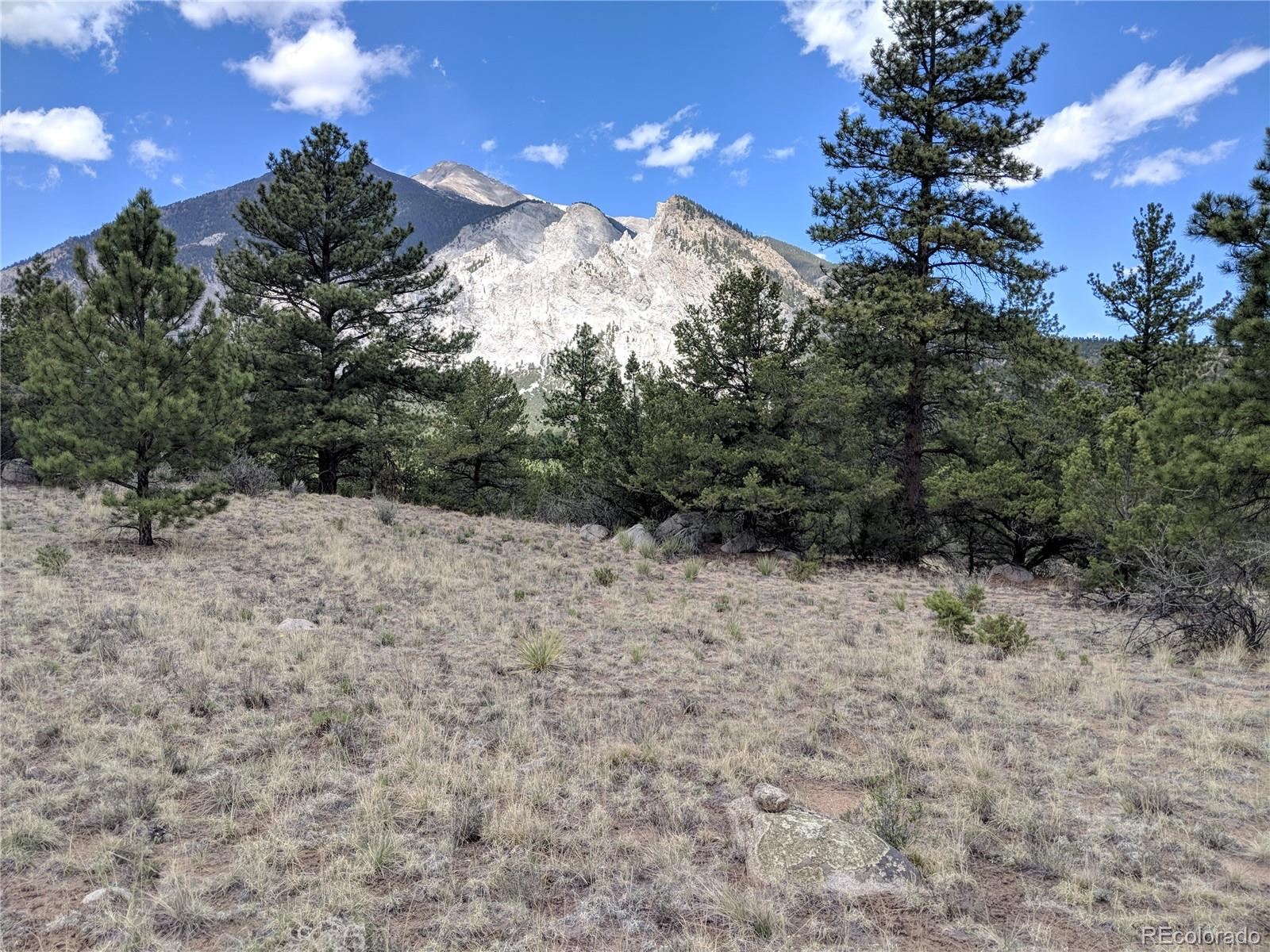 16088 Oppliger Drive Property Photo - Nathrop, CO real estate listing