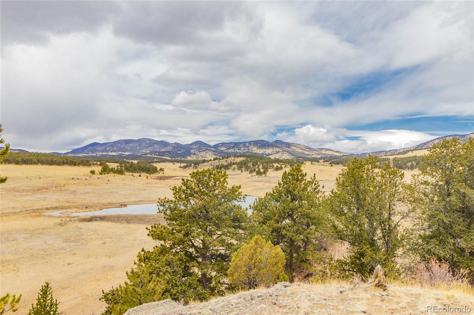 601 Old Kathleen Trail Property Photo - Guffey, CO real estate listing