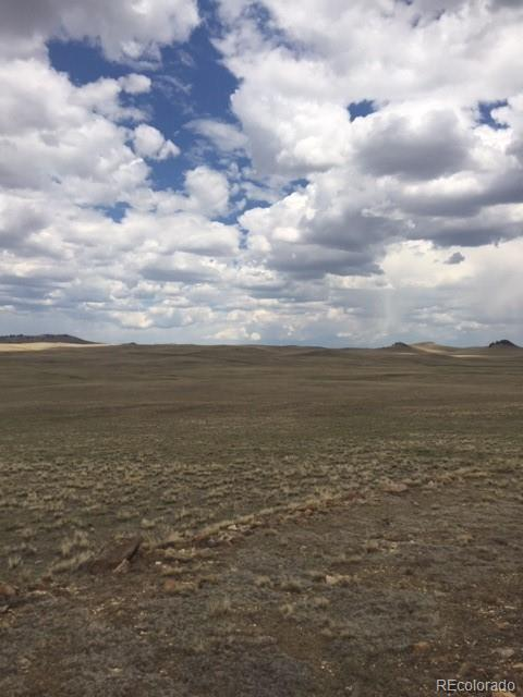 217 Migmac Trail Property Photo - Hartsel, CO real estate listing