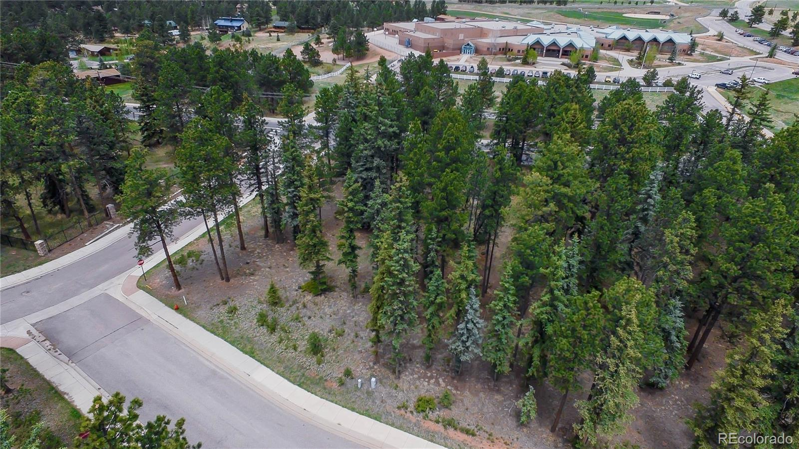 1265 Cottontail Trail Property Photo - Woodland Park, CO real estate listing