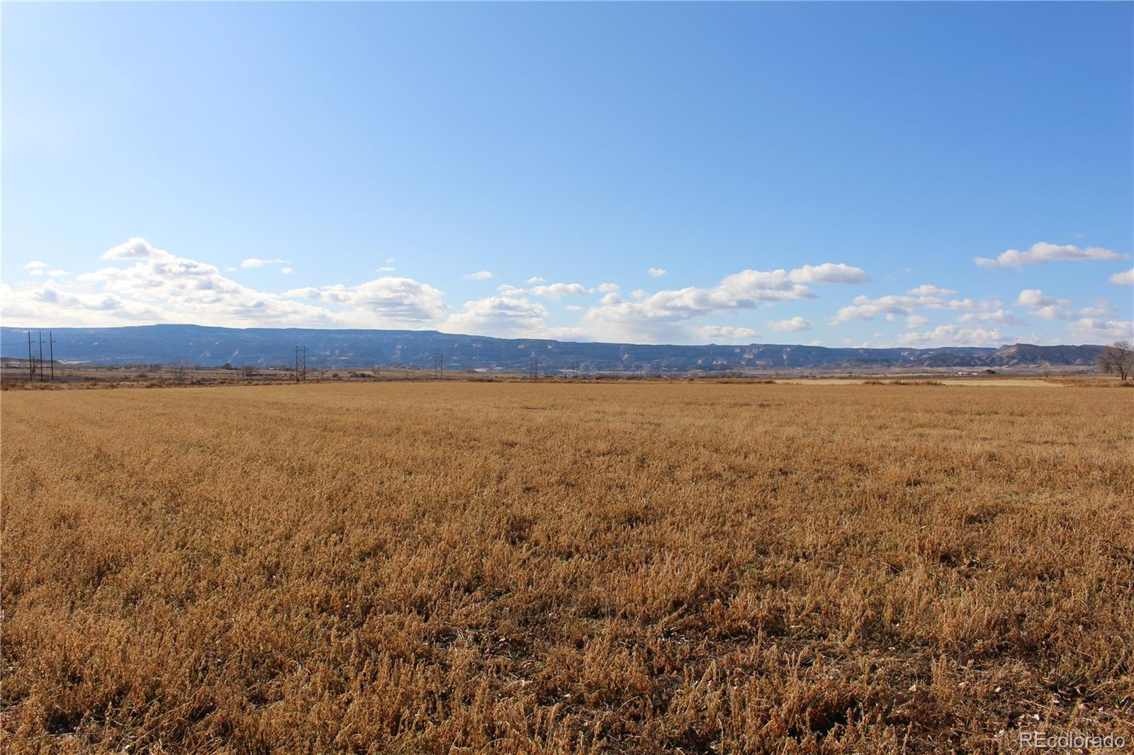 000 O Road Property Photo - Loma, CO real estate listing