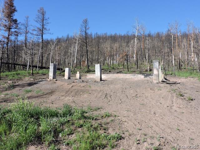 453 Wagon Mesa Loop Property Photo - Fort Garland, CO real estate listing