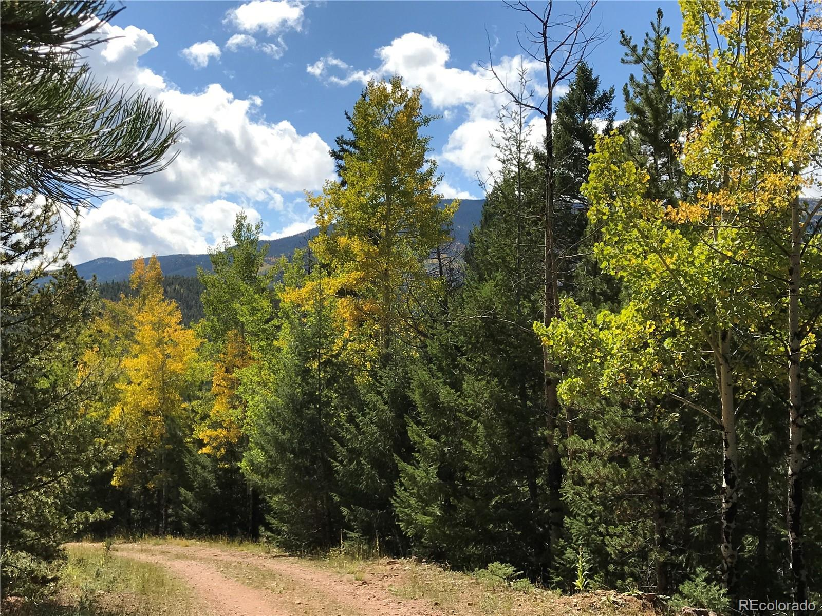 7231 Timbertrail Road Property Photo - Evergreen, CO real estate listing