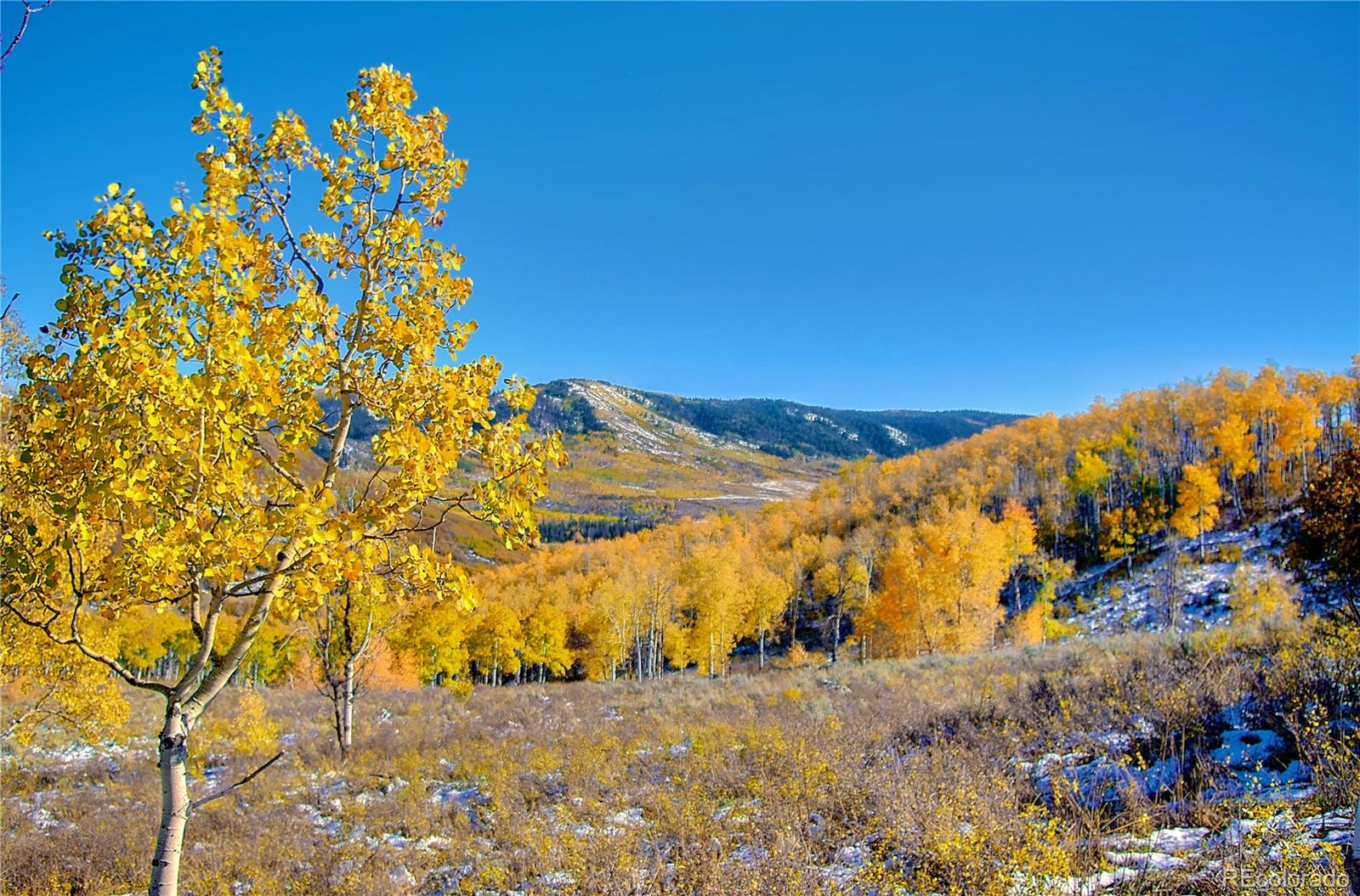 55850 Olive Street Property Photo - Clark, CO real estate listing