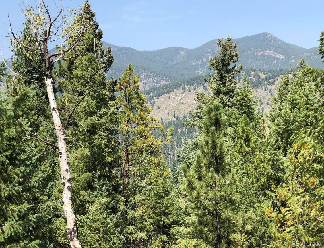 33864 Bergen View Trail, Evergreen, CO 80439 - Evergreen, CO real estate listing
