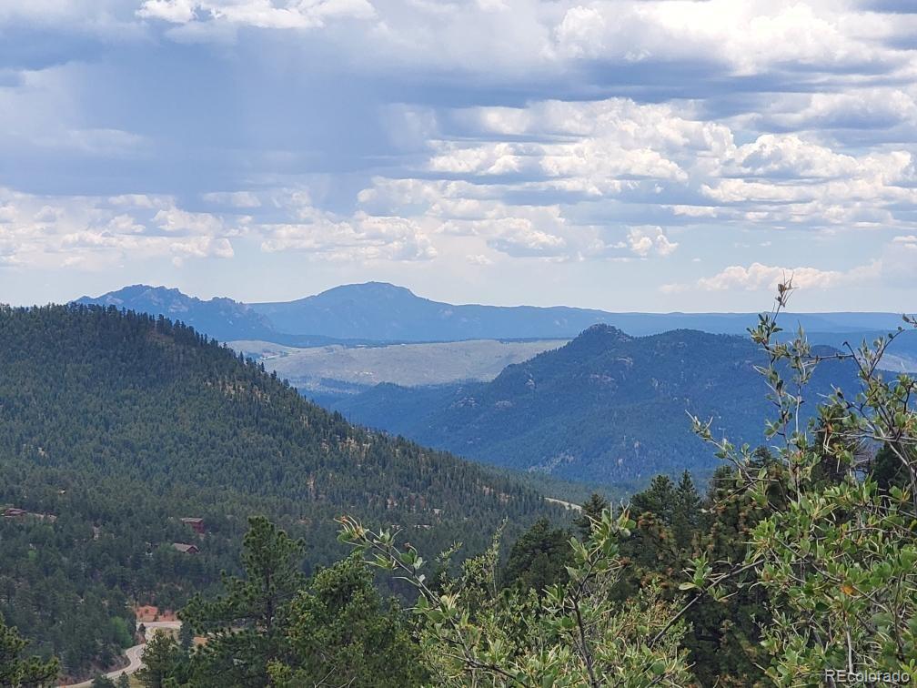31625 Half Peak Trail Property Photo - Pine, CO real estate listing