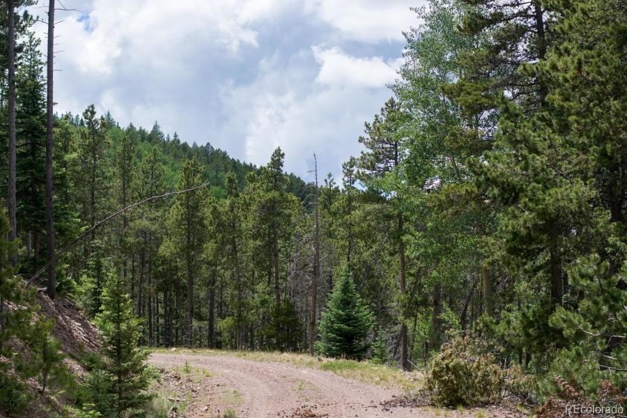 Forbes Wagon Creek Ranch Property Photo - Fort Garland, CO real estate listing