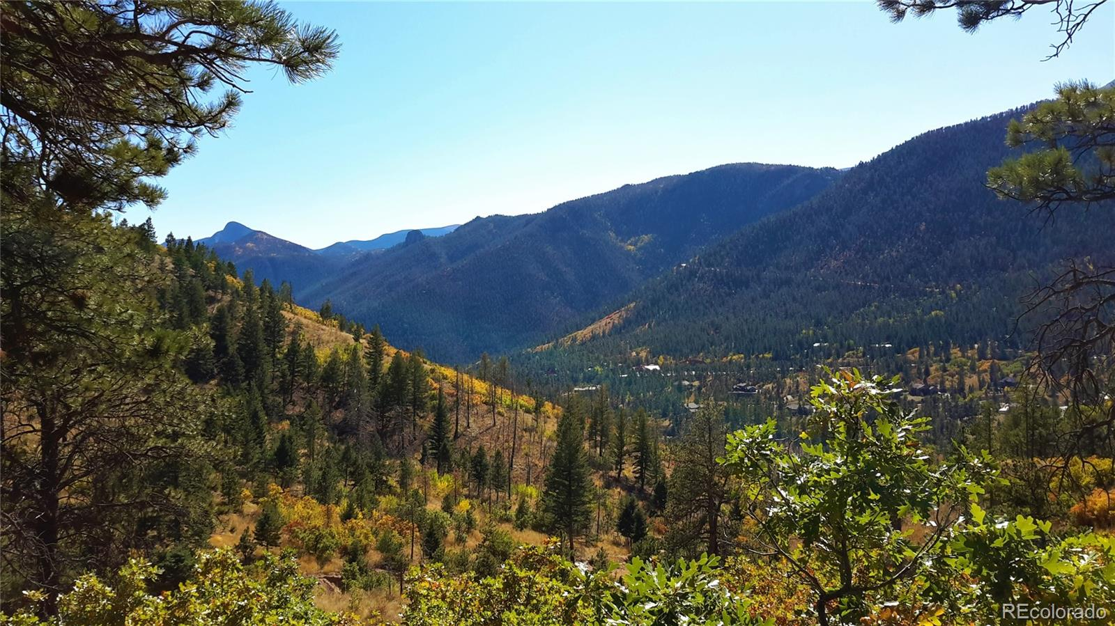 8210 Bear Dance Heights Property Photo - Cascade, CO real estate listing