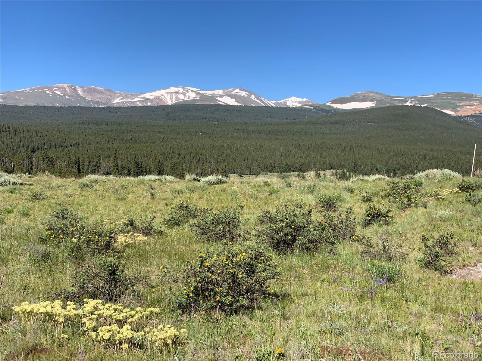 Ice Axe Court Property Photo - Alma, CO real estate listing