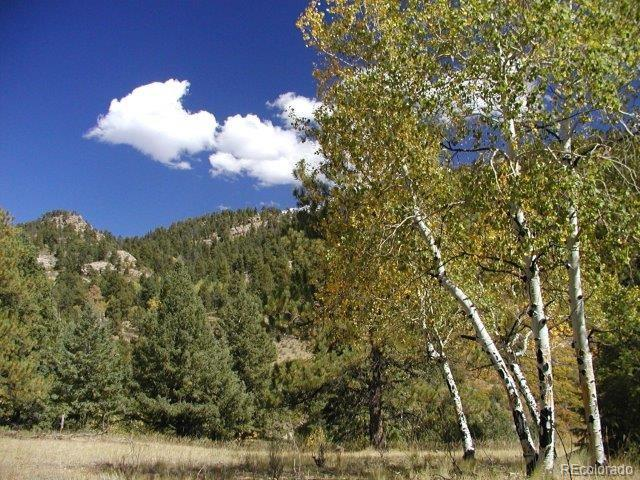 0 Secluded Canyon Heights Property Photo - Florissant, CO real estate listing