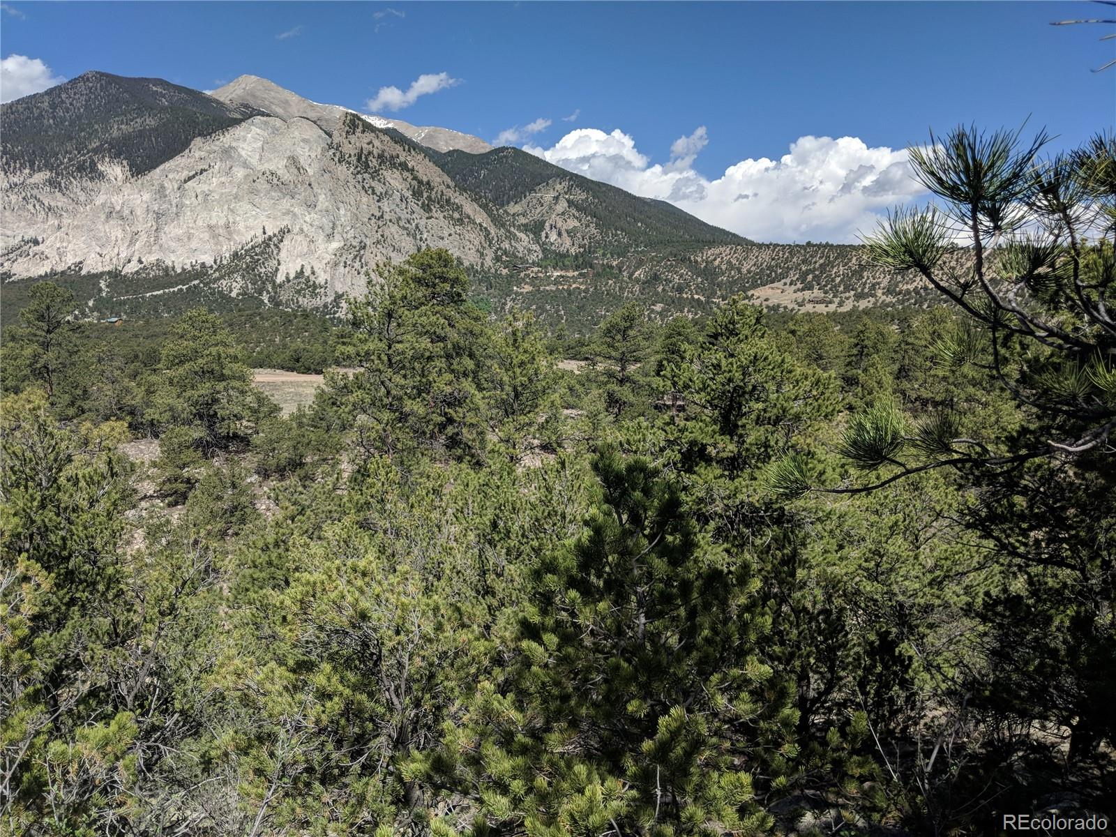 21180 Skyline Drive Property Photo - Nathrop, CO real estate listing
