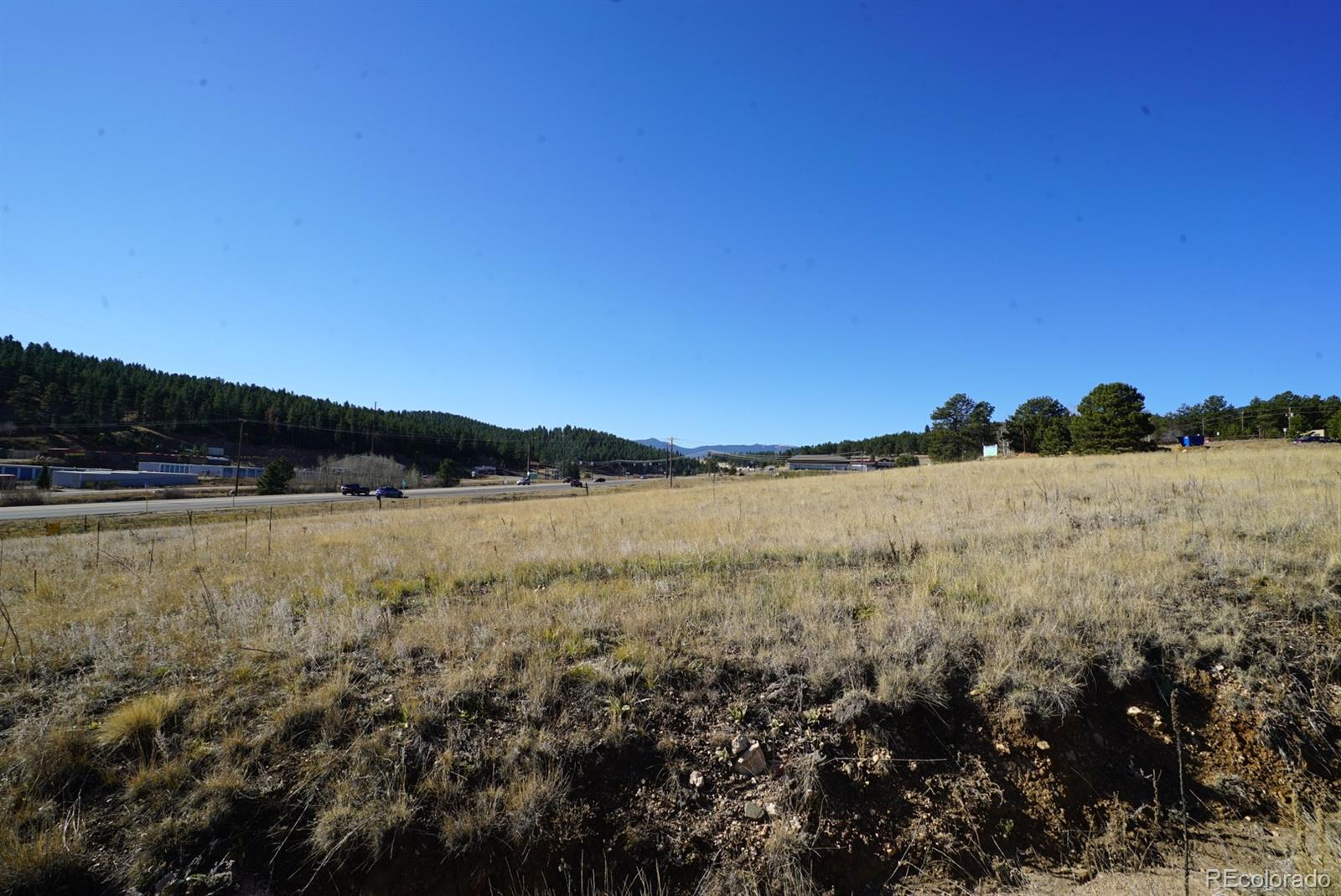 42 CO RD 43A Road Property Photo - Bailey, CO real estate listing
