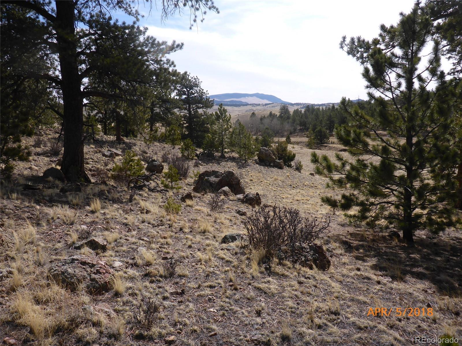 000 Isadowa Trail Property Photo - Hartsel, CO real estate listing