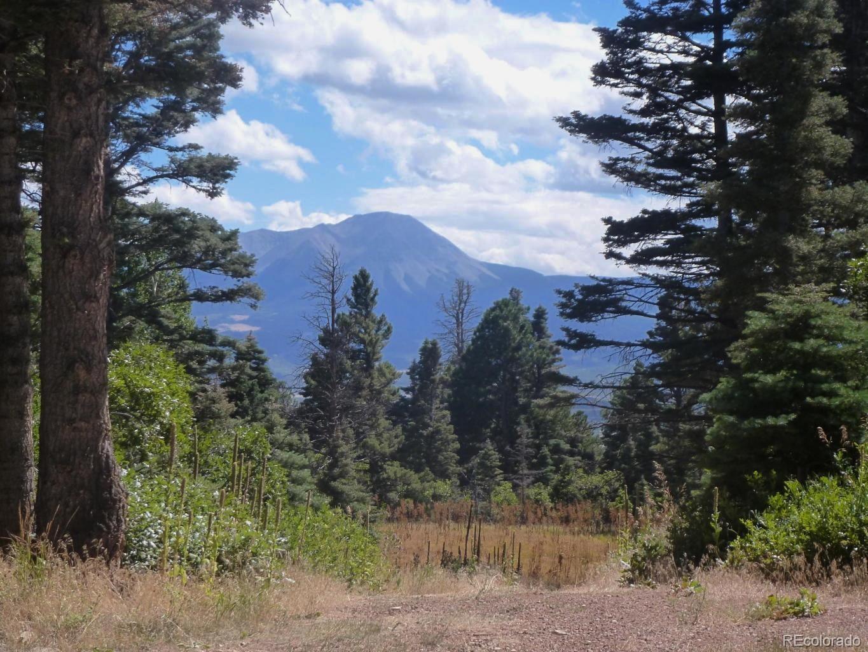 TBD Highway 160 Property Photo - La Veta, CO real estate listing