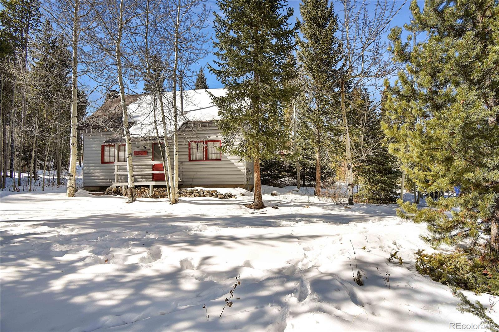 237 Lions Gate Drive Property Photo - Winter Park, CO real estate listing