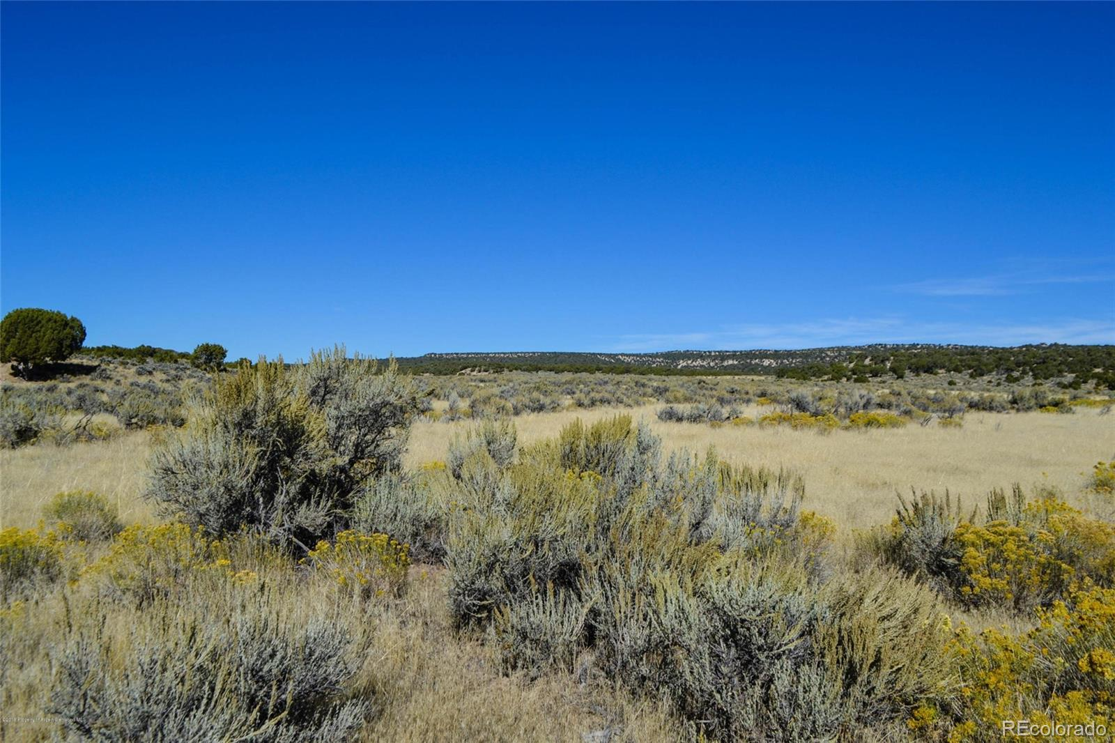 Parcel F State Hwy 318 Property Photo - Maybell, CO real estate listing