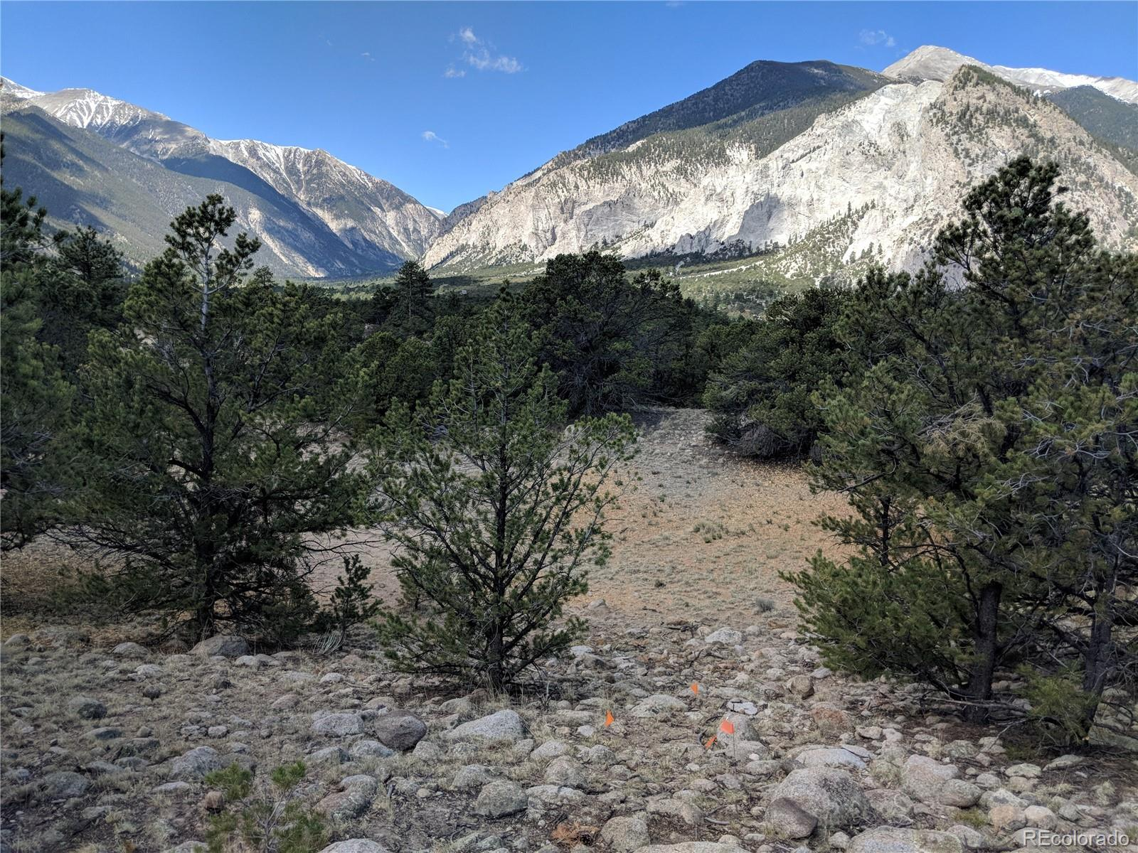 21284 Broadview Road Property Photo - Nathrop, CO real estate listing