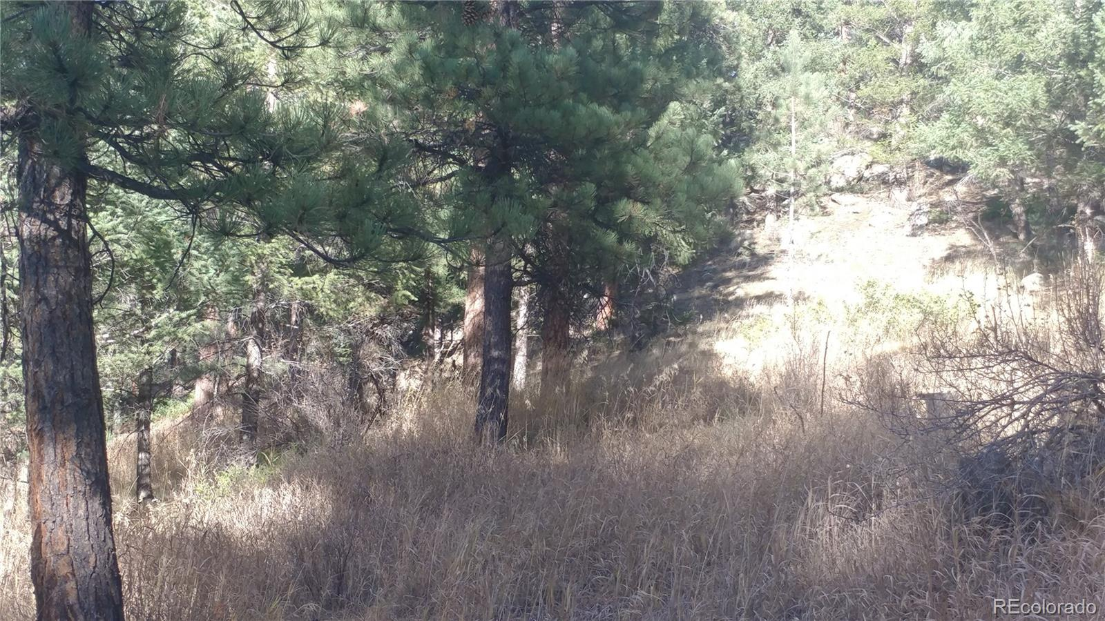 5298 S Cubmont Drive, Evergreen, CO 80439 - Evergreen, CO real estate listing