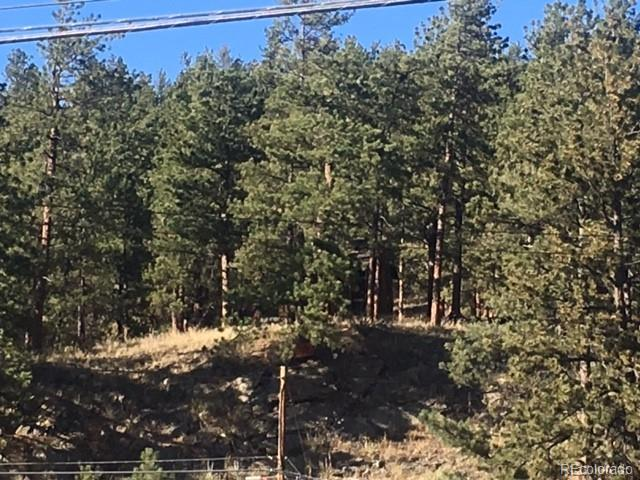 lot 7 tbd Hwy Property Photo - Bailey, CO real estate listing