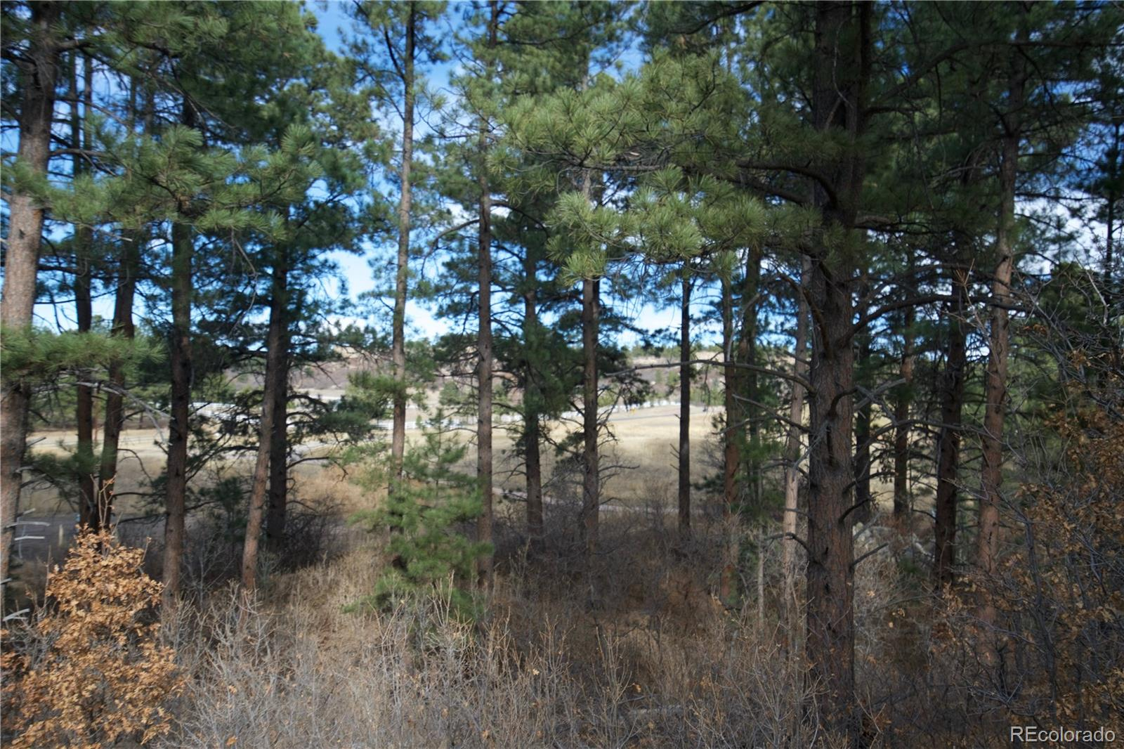 1151 Country Club Parkway Property Photo - Castle Rock, CO real estate listing