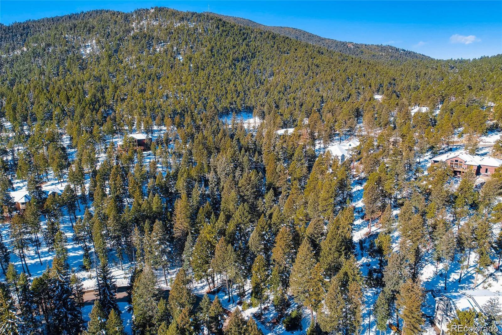 7807 S Settlers Drive Property Photo - Morrison, CO real estate listing