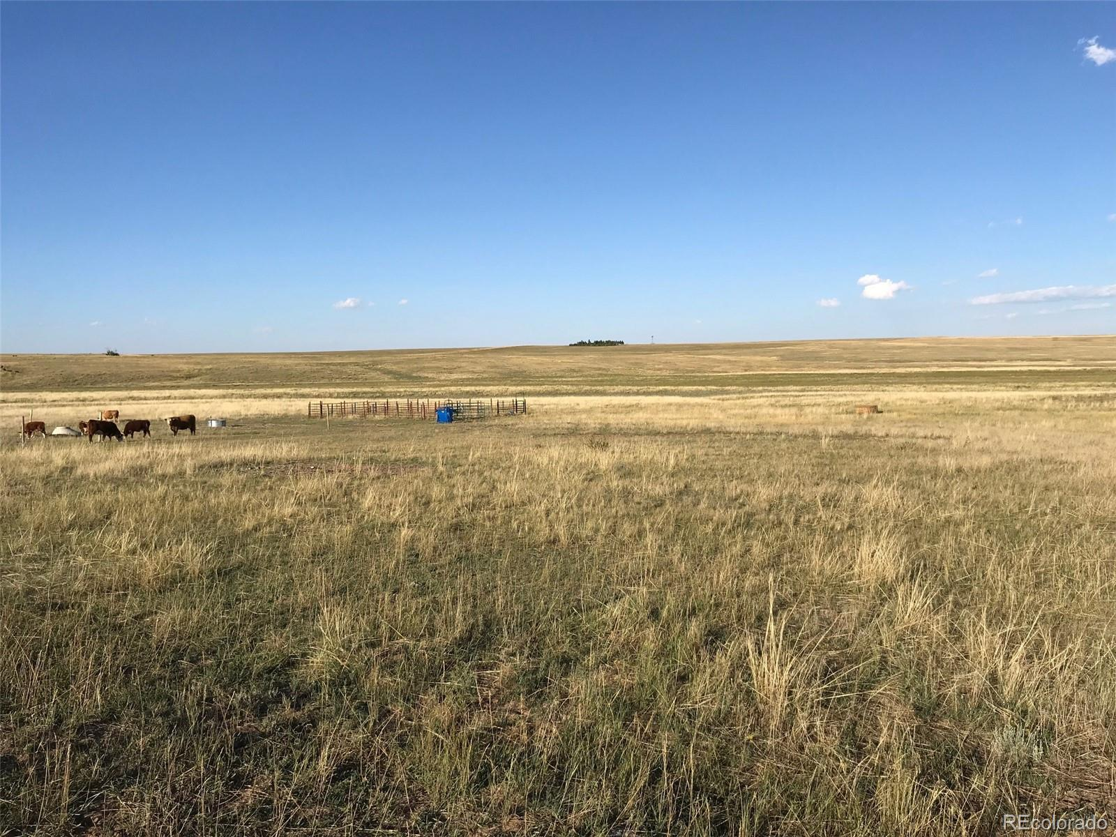 12155 Oil Well Road Property Photo - Calhan, CO real estate listing