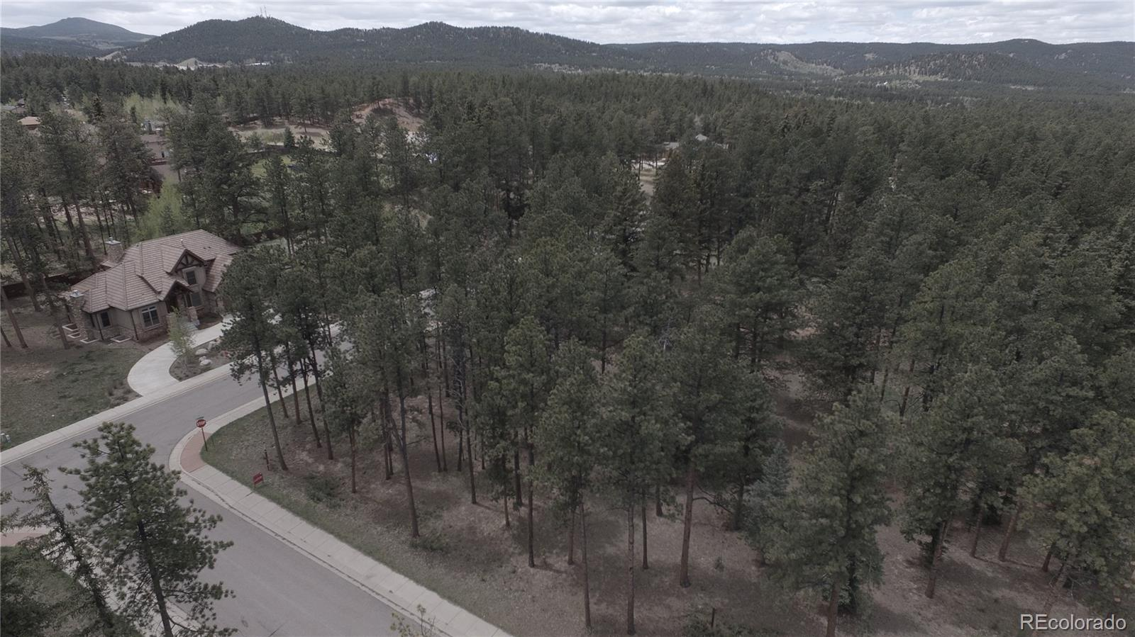 675 Chipmunk Drive Property Photo - Woodland Park, CO real estate listing