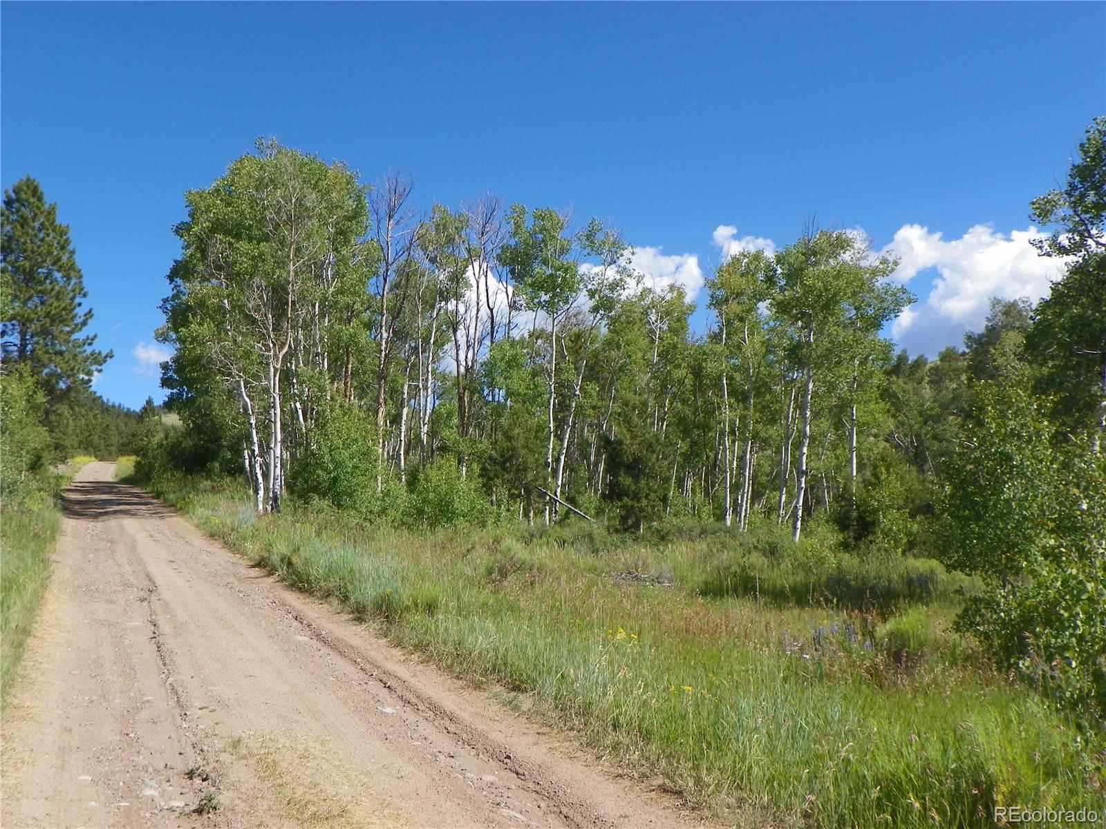 161.50 Acres Property Photo - Saguache, CO real estate listing