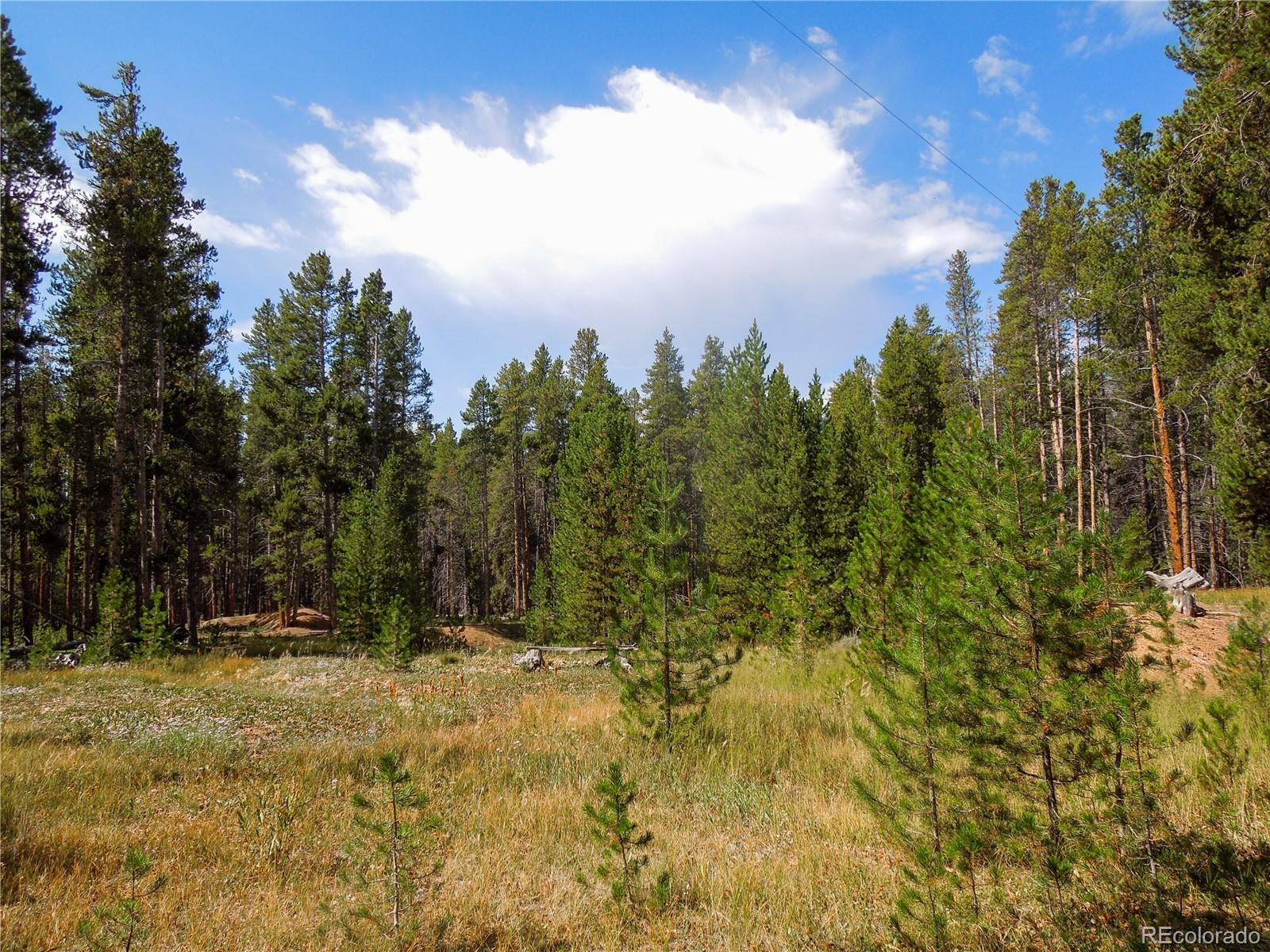 741 Rose Placer Property Photo - Leadville, CO real estate listing
