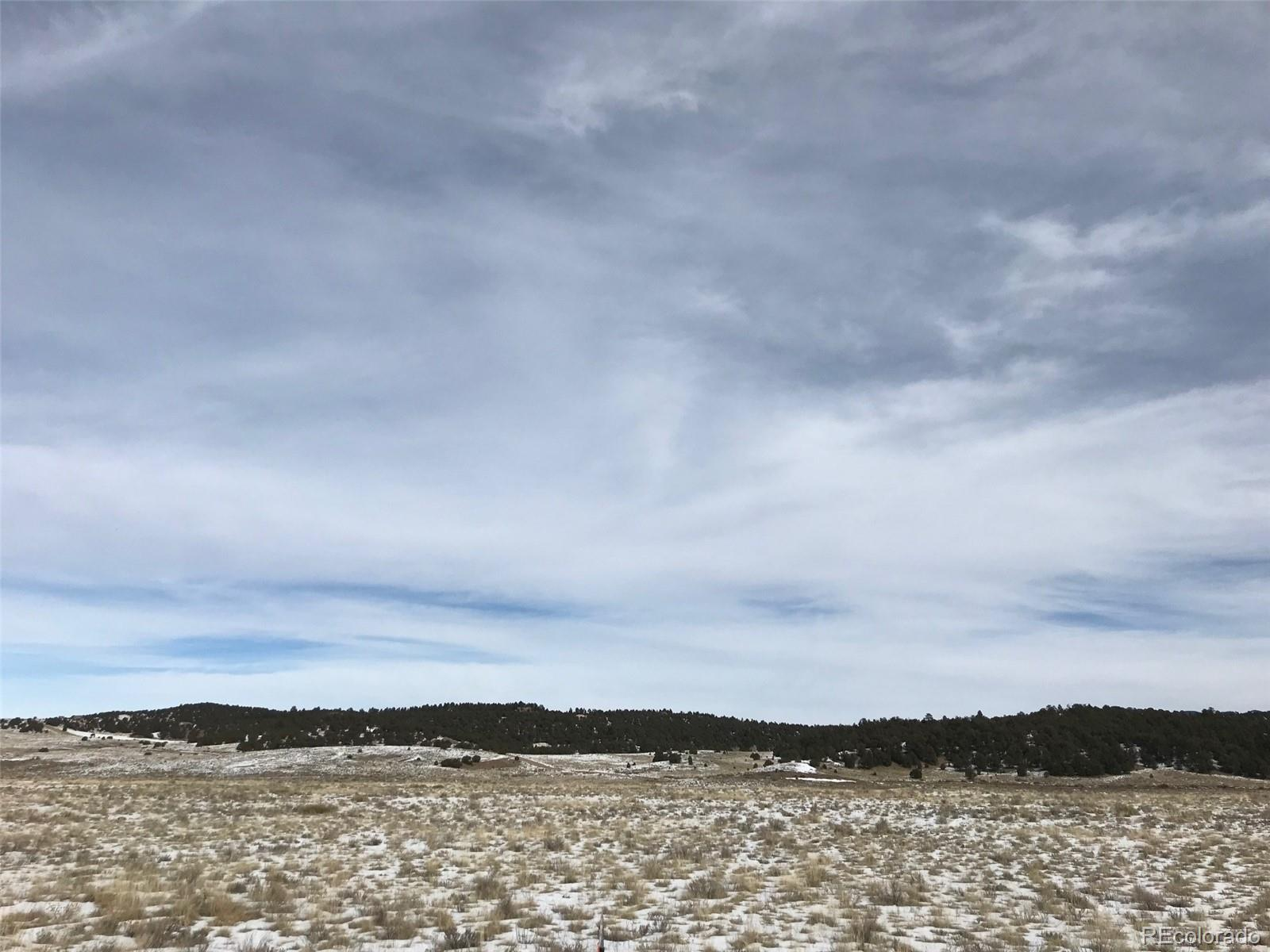 829 Co Road 310 Property Photo - Westcliffe, CO real estate listing