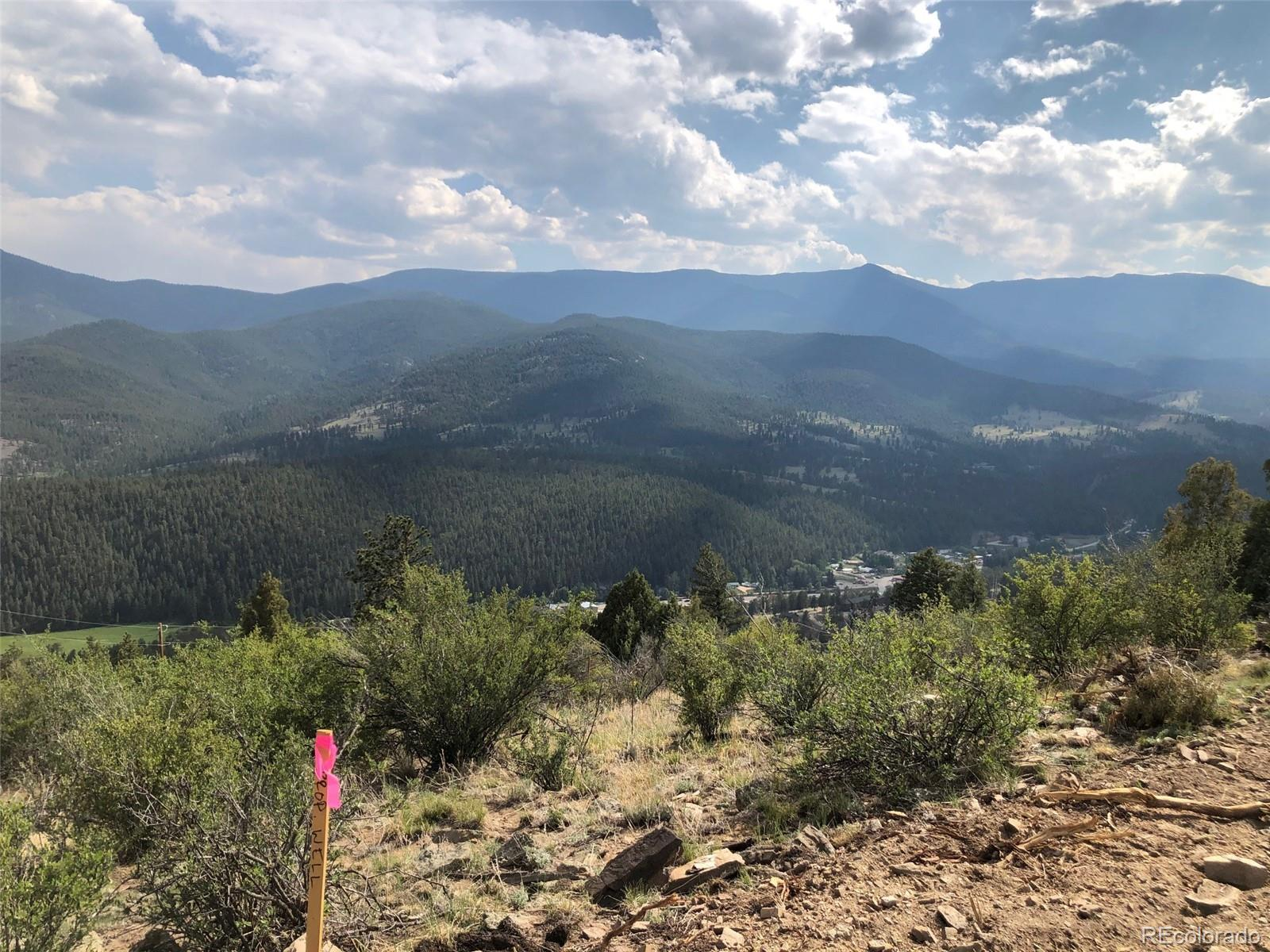 450 Pine Hollow Road Property Photo - Bailey, CO real estate listing