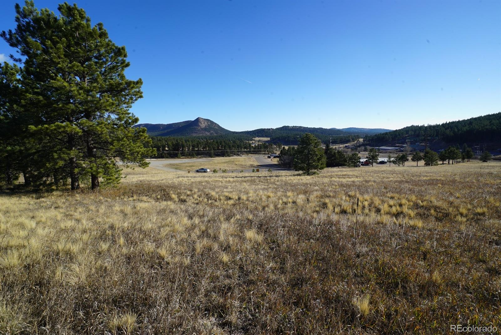 19 Bull Dogger Drive Property Photo - Bailey, CO real estate listing