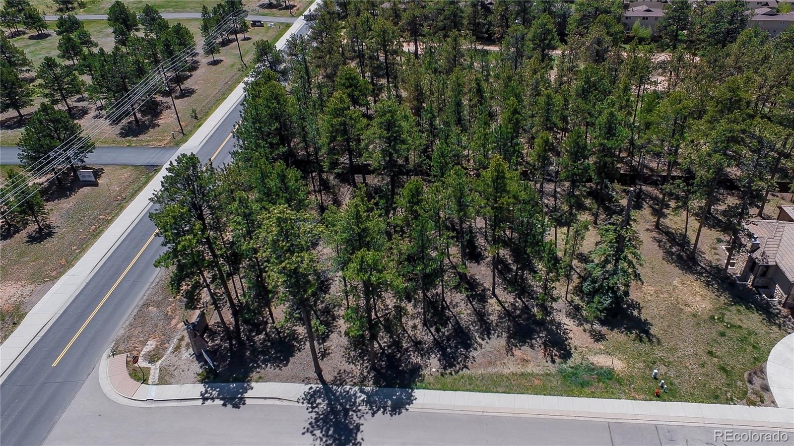 655 Meadowlark Lane Property Photo - Woodland Park, CO real estate listing