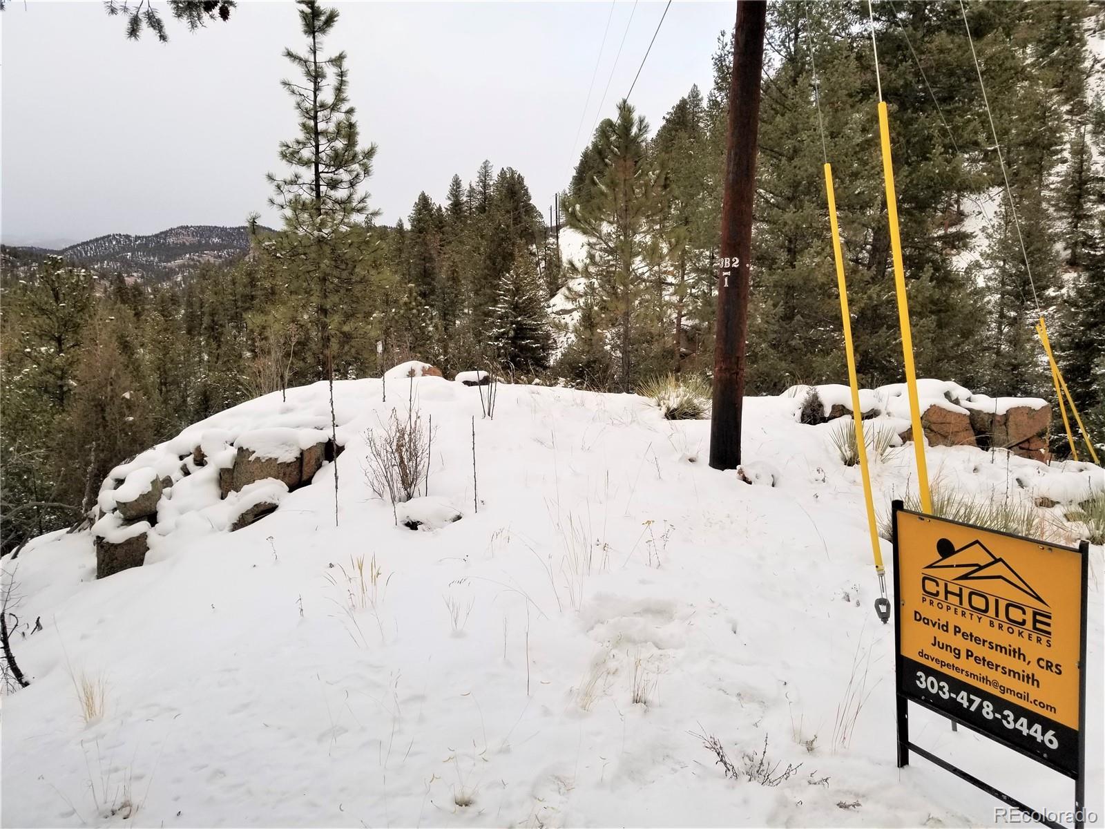 29101 Crystal Ridge Road Property Photo - Pine, CO real estate listing