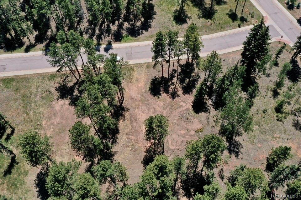 610 Meadowlark Property Photo - Woodland Park, CO real estate listing