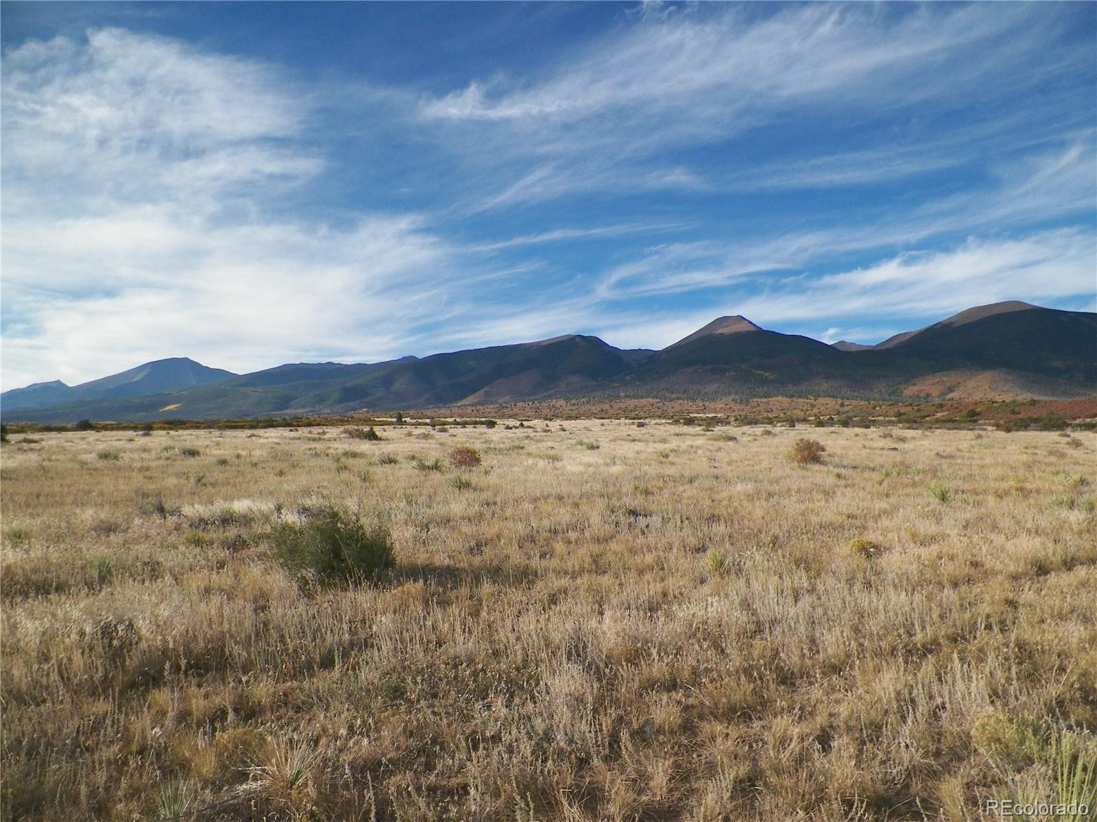 798 RUNNING BEAR Property Photo - Cotopaxi, CO real estate listing