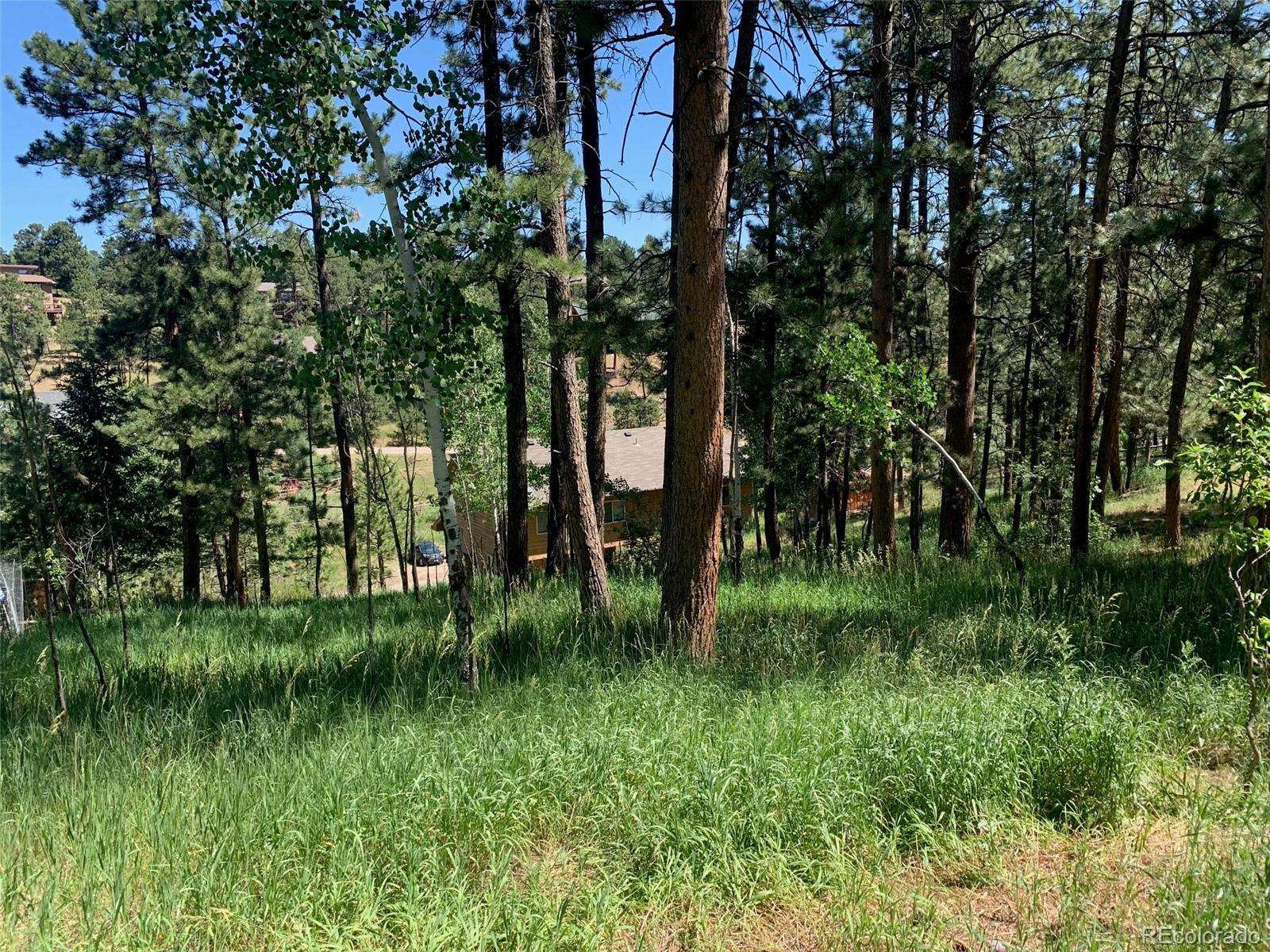 29983 Spruce Road, Evergreen, CO 80439 - Evergreen, CO real estate listing
