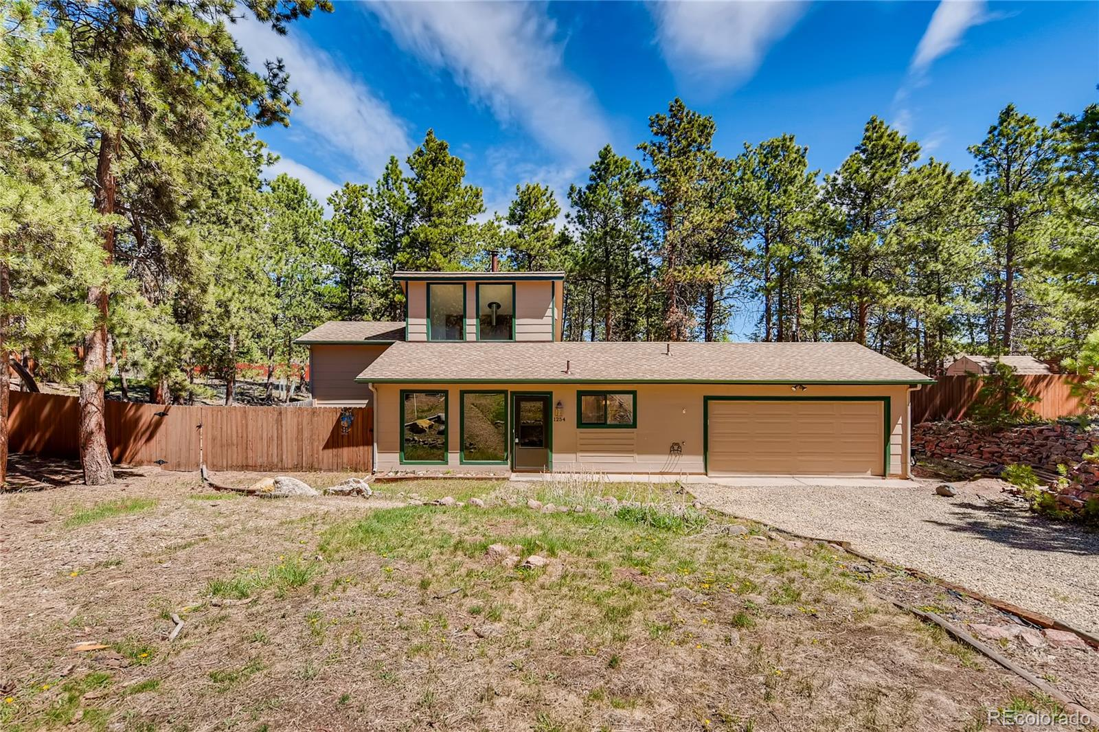 1254 Terri Lane Property Photo - Woodland Park, CO real estate listing